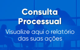 Consulta Processual